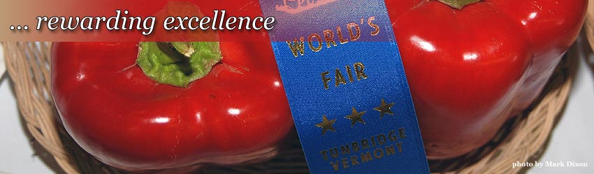 Rewarding Excellence
